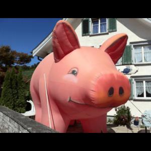 aufblasbares Schwein gross